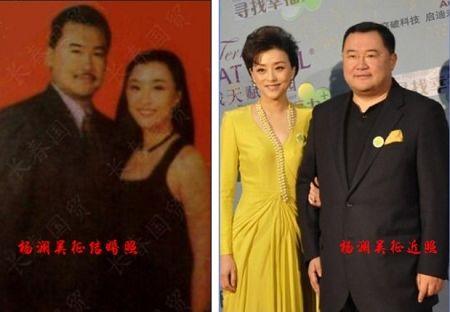 杨澜老公吴征简介和照片,杨澜的第一任老公张