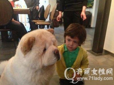 欧美可爱萌小孩与狗