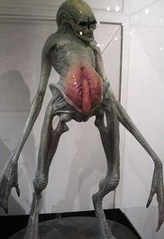 实拍ufo惊现女外星人图,ufo外星人女照片图,活的ufo外星人尸体