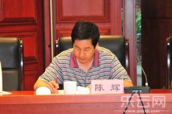 云南航务局原处长陈辉简历资料照片,云南省航务局原处长谋杀女友