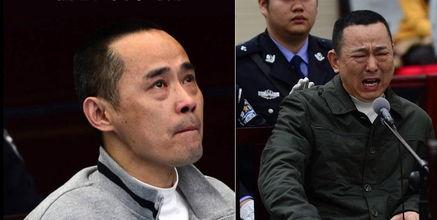 刘汉刘维案最新消息,刘汉刘维被处死刑照曝光,刘汉刘维的后台 3