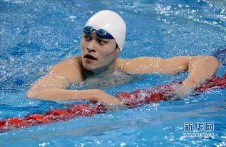 游泳冠军孙杨最新消息,为什么孙杨游泳那么快,日本评价孙杨朴泰桓