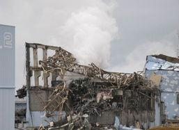 福岛核泄漏变异鲶鱼_日本福岛核事故是哪一年 日本核电站福岛变异人 图片(2)_天涯八卦网
