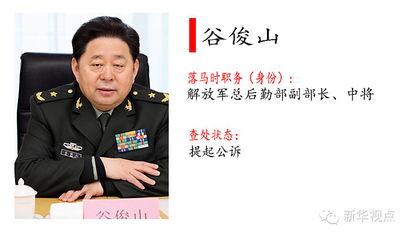 谷俊山被判死刑了后台失势内幕,谷俊山情妇名单简历照片妻子背景(2)
