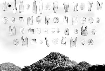 科学家发现世界上最早的人类化石图片