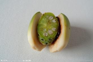 吃槟榔最正确的方式,怎么吃槟榔最不伤口?