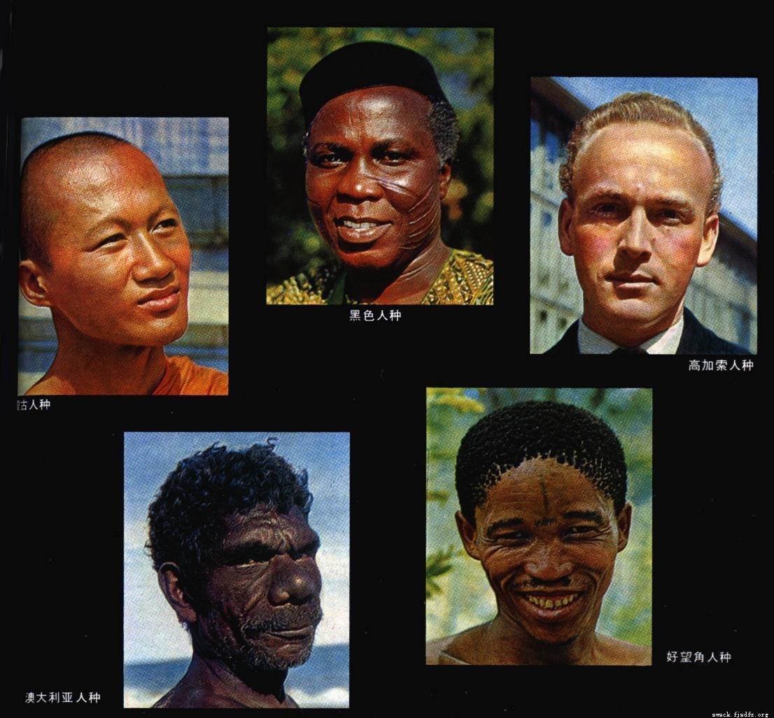 世界四大人种是指哪些?世界上人口最多的最聪明的人种分类分布图(2)