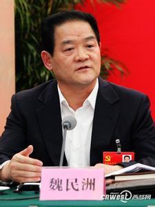 陕西人大常委副主任魏民洲出事被查原因去向,简历资料背景妻子图