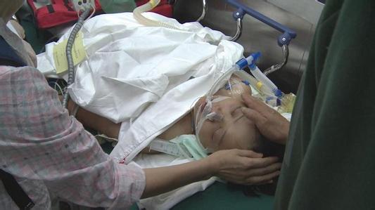 巴厘岛患怪病女司机去世什么病揭秘,杨婷怎么感染病毒