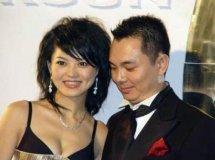 李湘前夫家暴真假,李厚霖结过几次婚感情经历为什么要娶李湘
