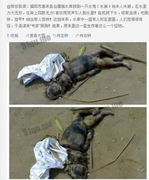 水猴子为什么要拉人_水猴子真的存在有人看见过高清图 水猴子为什么要拉人
