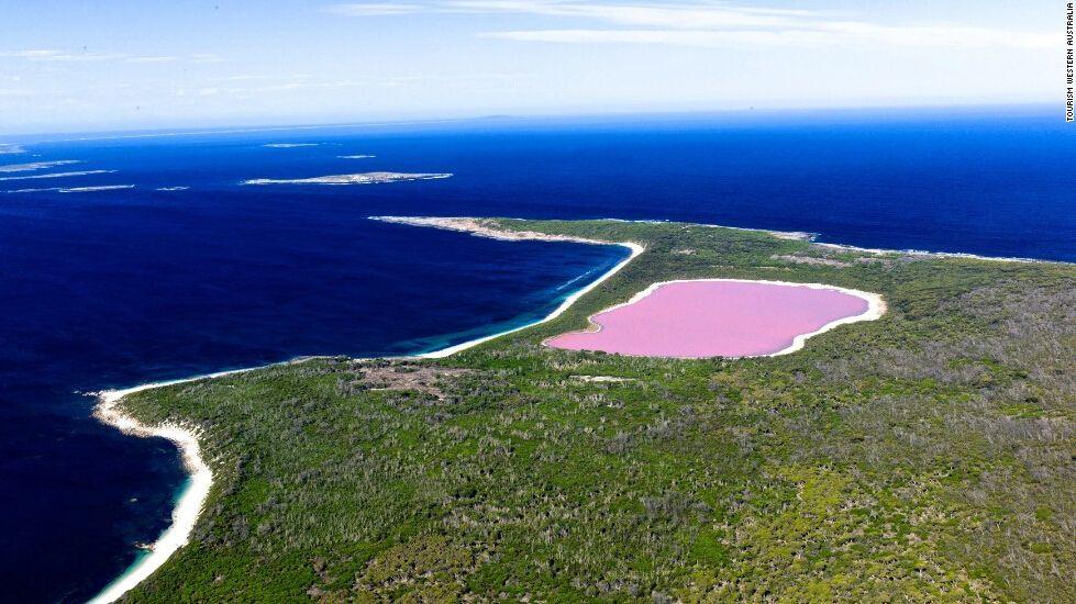 史上最强电脑_塞内加尔粉色玫瑰湖为什么颜色会变 游泳可以浮起来吗里面有鱼 ...