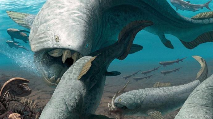 娱乐资讯     所以邓氏鱼被视为泥盆纪时代最大的(海洋)猎食者,同时
