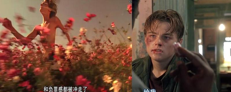 小李子在花丛中跑的电影