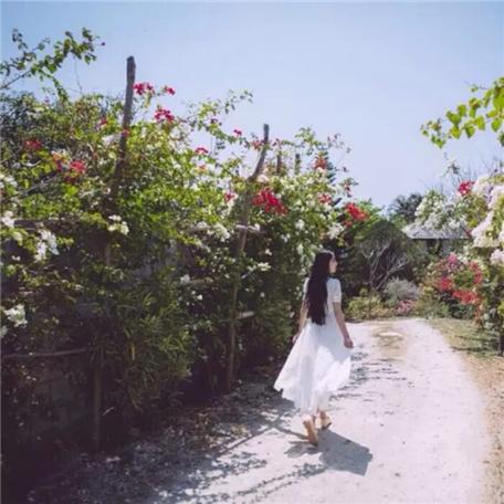 女生超仙昵称二字 森系樱花女生网名超唯美 仙气十足的女生网名