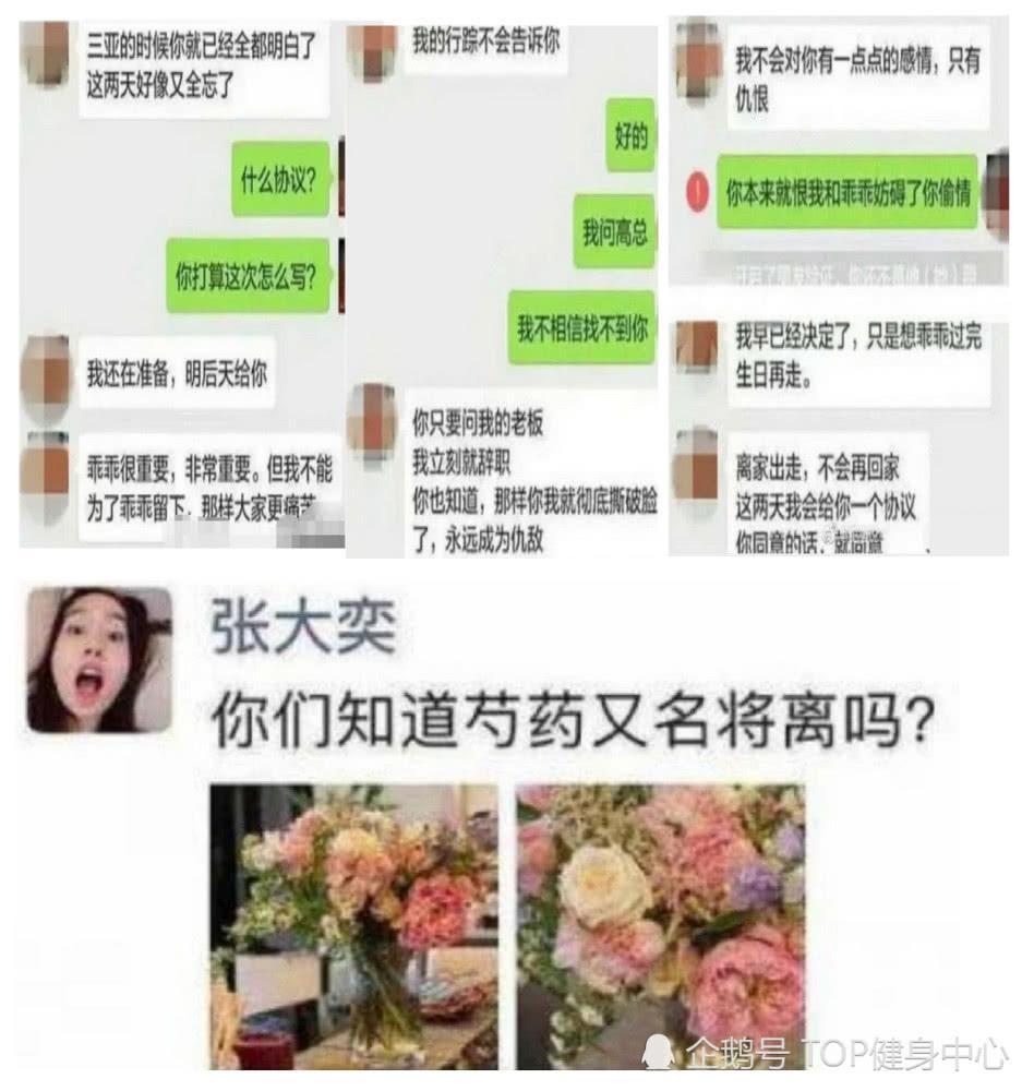 蒋凡老婆董杨个人资料嫁人前干什么的?董杨蒋凡聊天记录离婚了吗