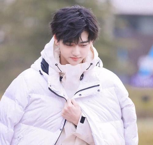 韩国网友评论刘些宁,刘些宁焉栩嘉真的假的怎么回事在一起了吗?