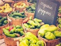 有创意突出绿色健康的农产品店名 原生态乡土气息浓的农产品店名