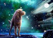 狮子座最心疼哪个星座?最能降的住狮子座的星座,谁最疼爱狮子座